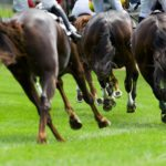 Steeplechase Horse Racing on turf rounding corner